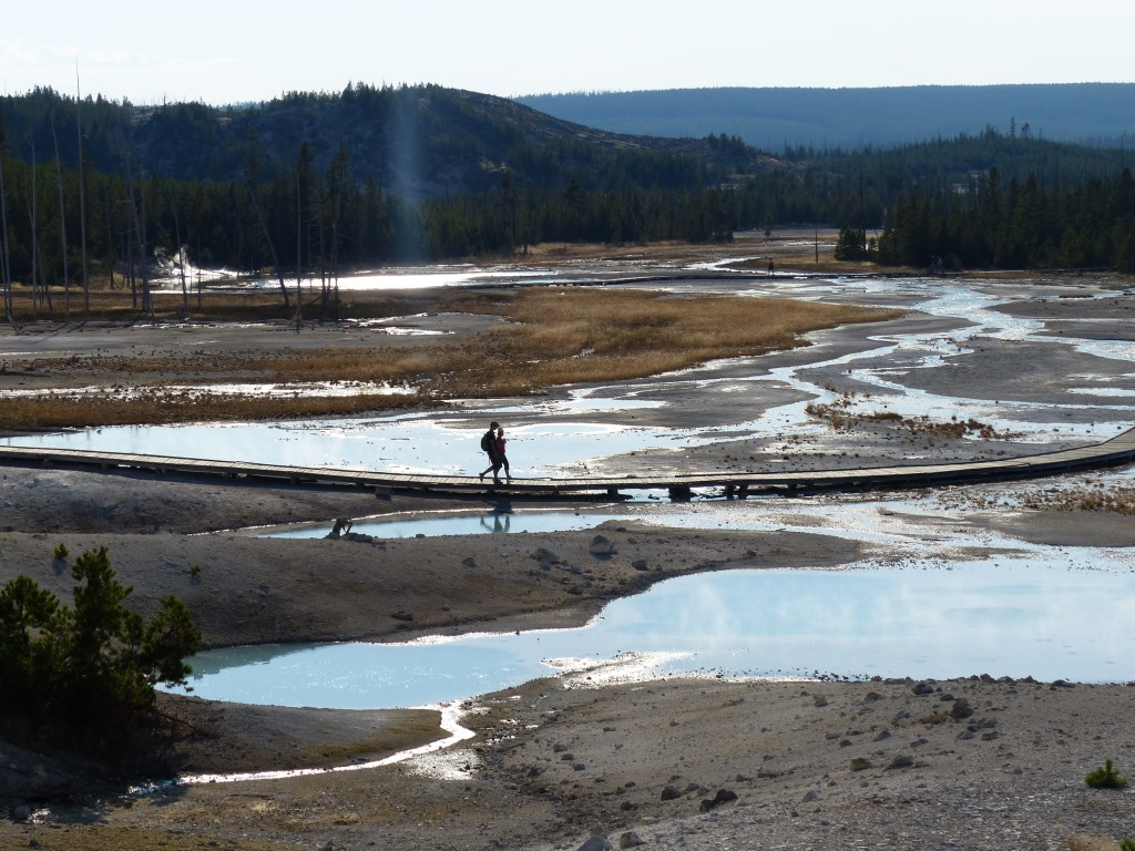Alistair - Norris Geyser Basin 4